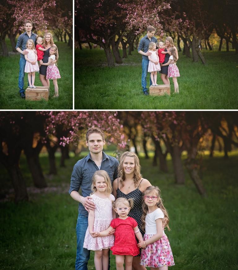 ottawa family photographer, spring photos, cherry blossoms